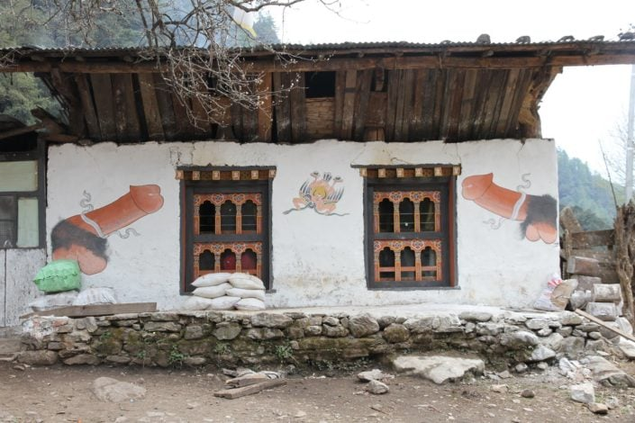 Phallus paintings can be seen painted on many houses in Bhutan, these symbols of are intended to drive away the evil eye and dirty gossips. On the wall of the house you can also see GARUDA, a bird like creature eating a snake (Naga). This image is used to as the charm to protect the household from all the evil (originaly from snake attack and its poison). Garuda plays an important role in Buddhist and Hindu symbolism, for example it is the vehicle of Vishnu and in human terms the vehicle of the sovereign. It was introduced as the symbol of the Government of Thailand.