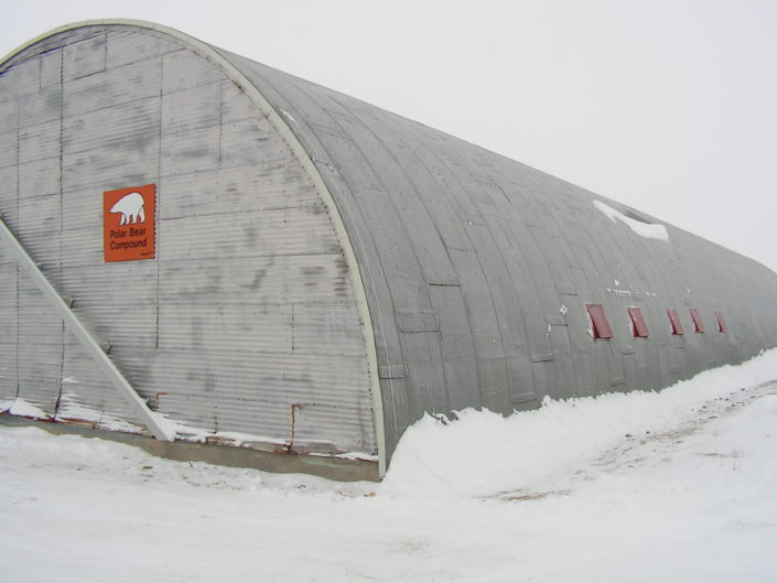 """Any bear that is caught within the city of Churchill is placed in the Polar Bear Compound for 30days on average. During their stay in """"jail"""", bears are given only water and have almost no interaction with humans and other bears that are being kept there. After having served their """"sentence"""" bears are flown away from the city."""